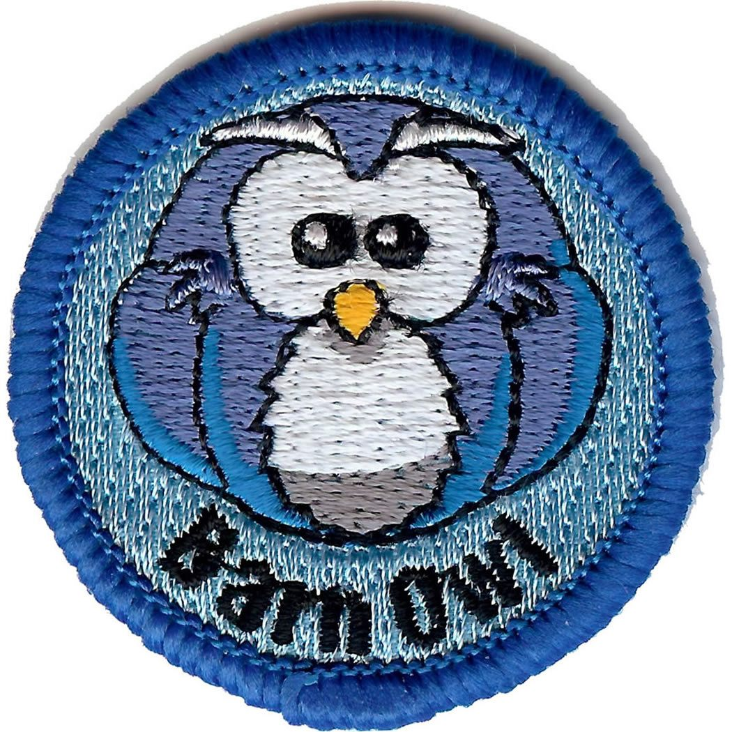 Embroidered - Barn Owl