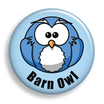 Barn Owl (pin)