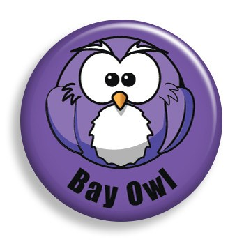Bay Owl (pin)