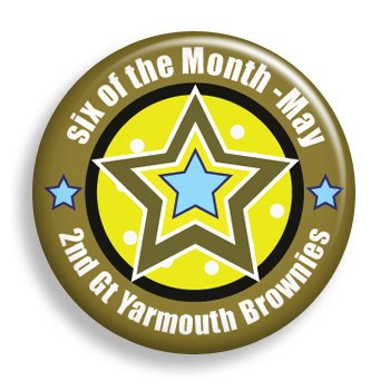 Brownie of the Month (pin)