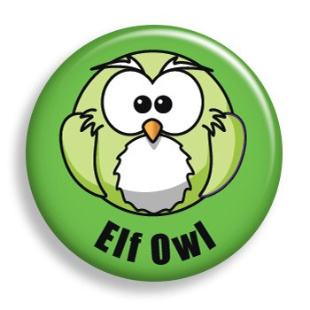 Elf Owl (pin)