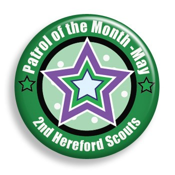 Patrol of the Month (pin)