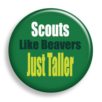 Scouts Just Taller (pin)