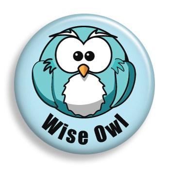 Wise Owl (pin)