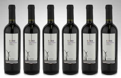 Nero D'Avola Solea by Cantine Cellaro (Case of 6 - Italian Red Wine)