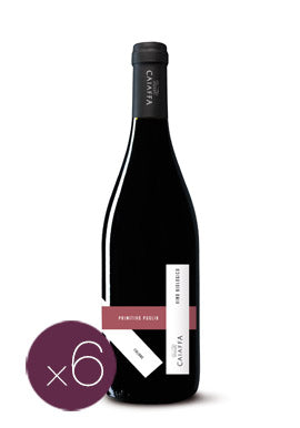 Primitivo Puglia IGT by Caiaffa (Case of 6 - Italian Organic Red Wine)