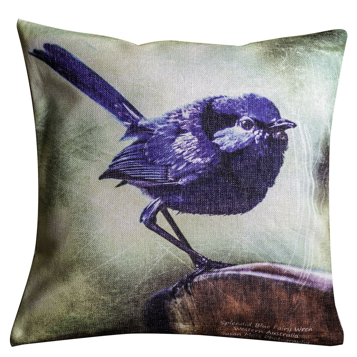 Splendid Blue Fairy Wren Cushion Cover