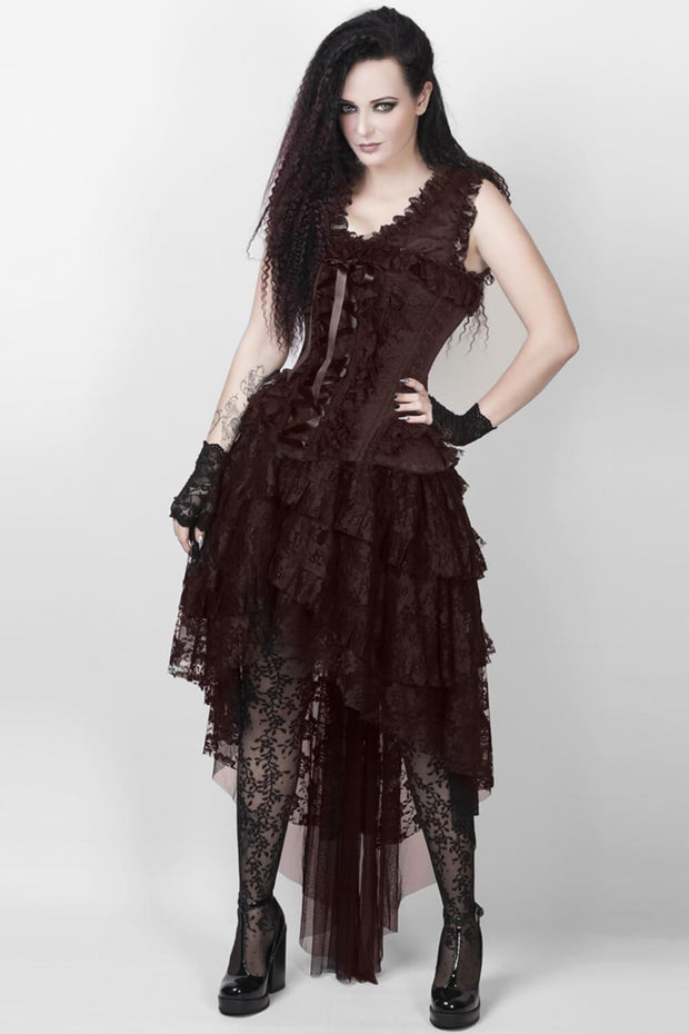 Ronnie Victorian Inspired Brown Corset Dress