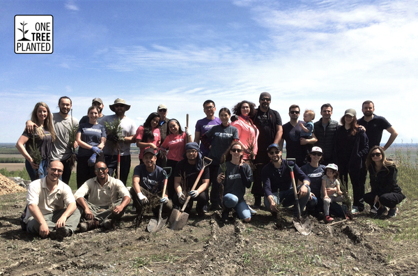 Tree planting in Mont Sainte-Hilaire | Madovar x 1% for the planet | Sustainable luxury