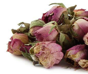 Rose- Organically Cultivated