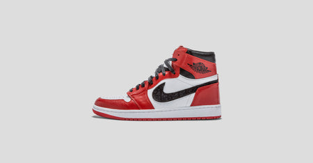 Air Jordan 1 Dior Chicago