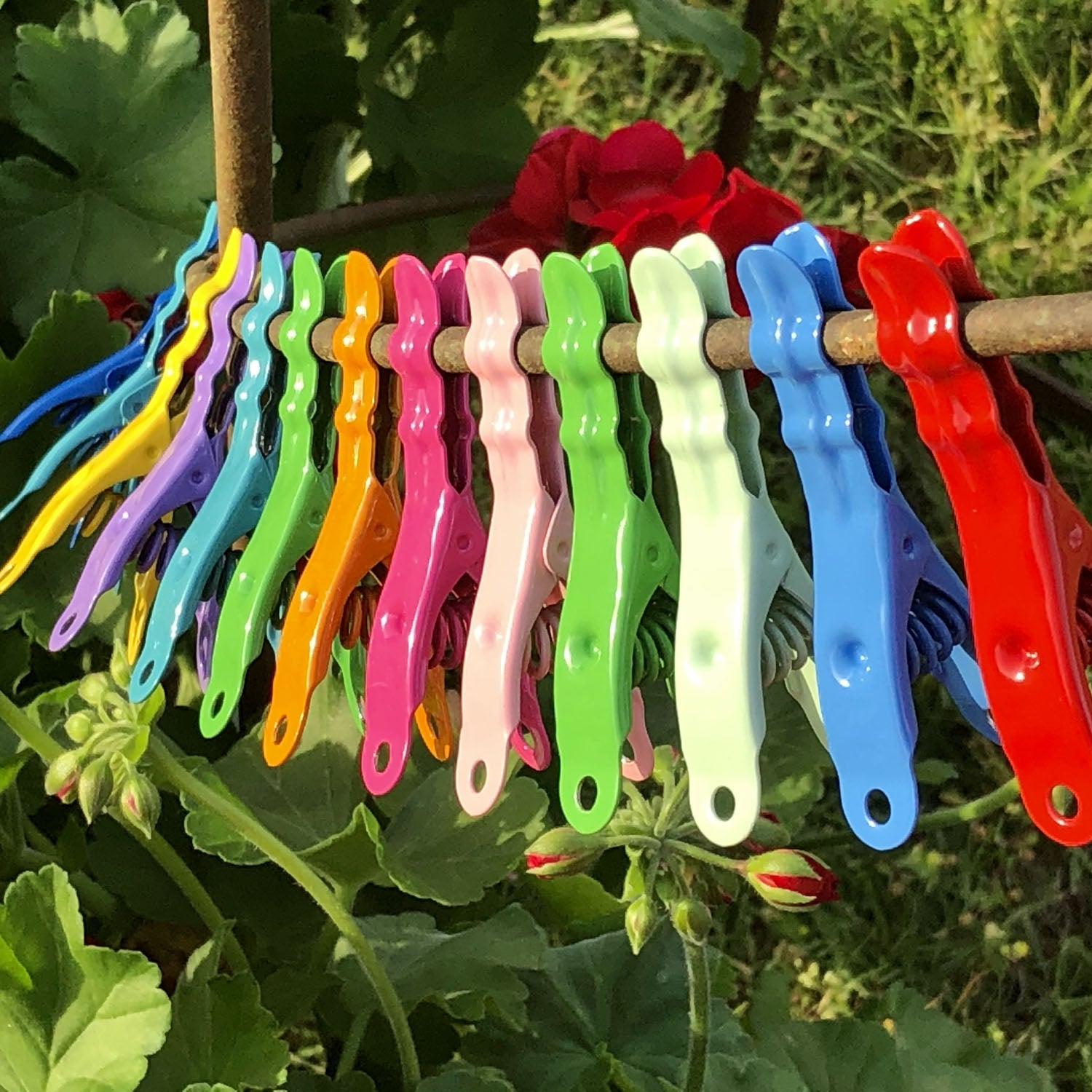 Extreme Colour Clothespins - Chili Pepper Red