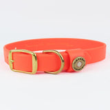 Water Dog Collar | Orange