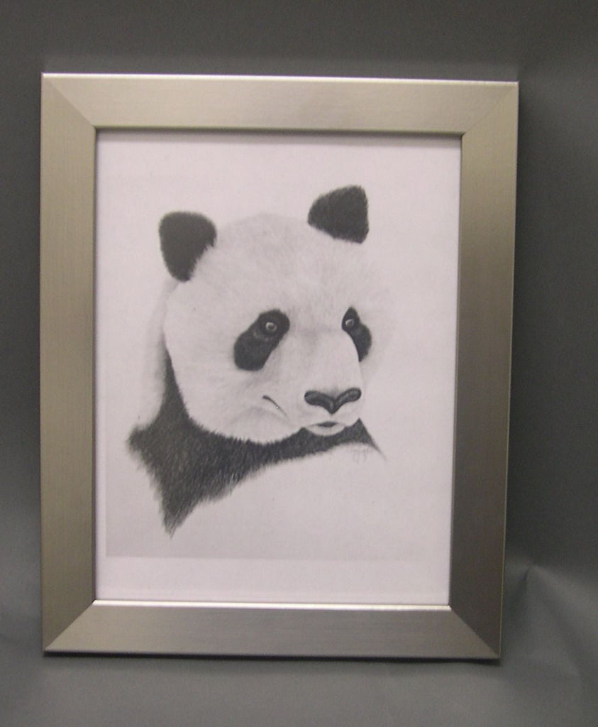 SM8016 8.5x11 Brushed Silver Wood Core Frame