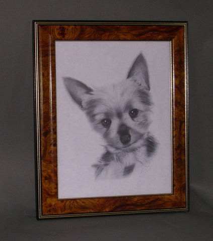 SM2833 8.5x11 Walnut Burl Wood Frame