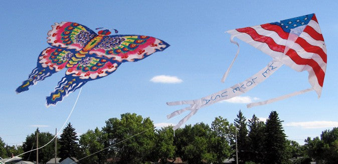 Color-In Kites