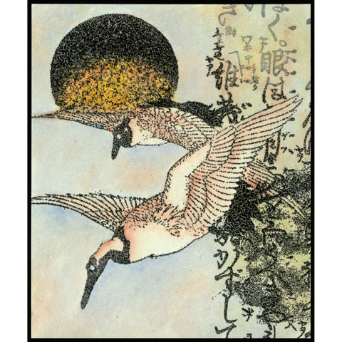 Two cranes flying with the sun behind them, rubber stamp