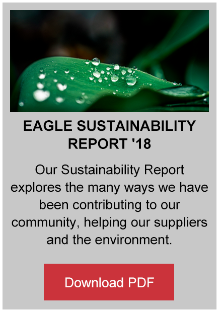 Eagle Sustainability Report 2018 button