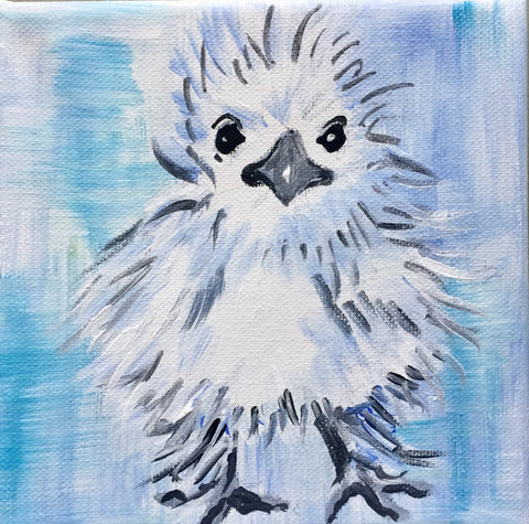 silkie white chick