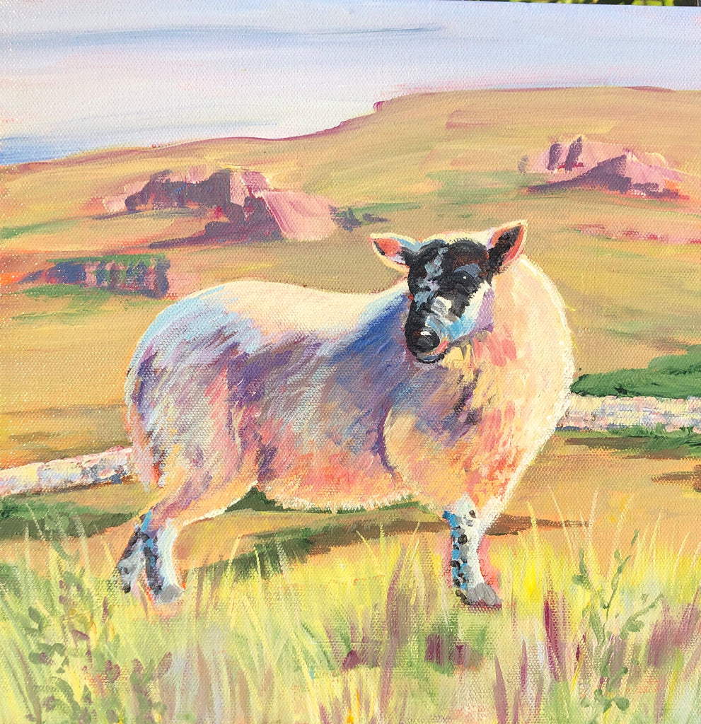 Sheep on a Highland hill Print