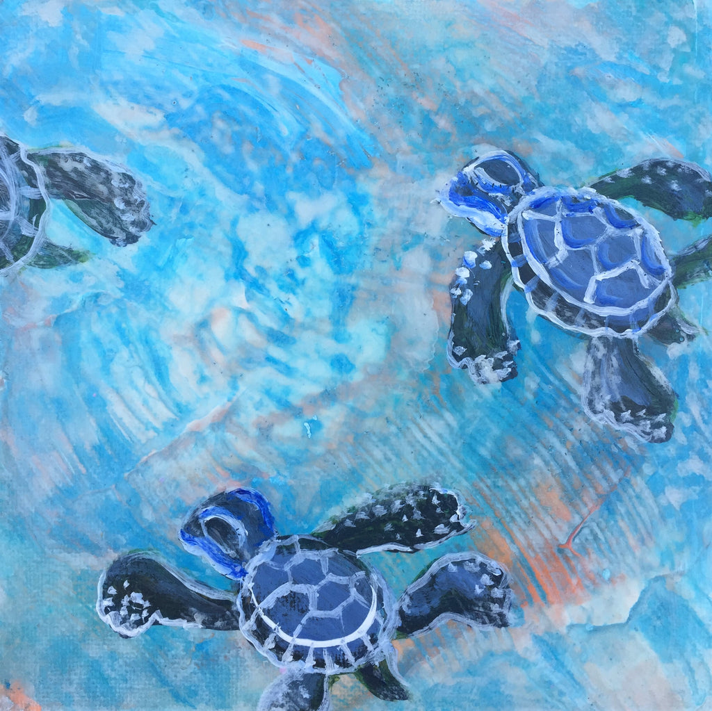 Sea Turtle Baby Journey 2