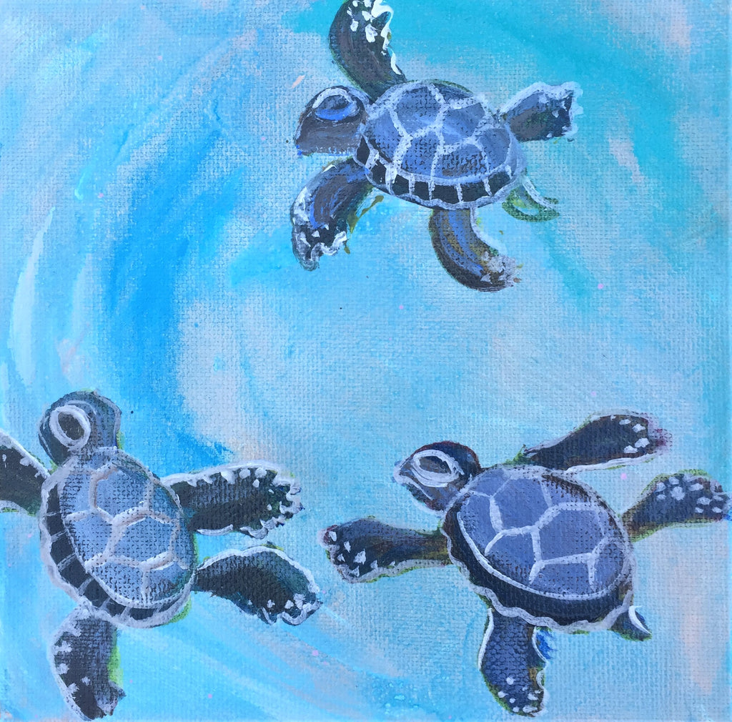Sea Turtle Baby Journey 4