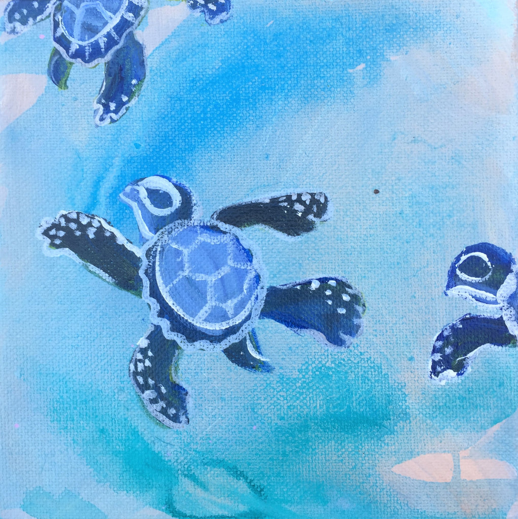 Sea Turtle Baby Journey 6