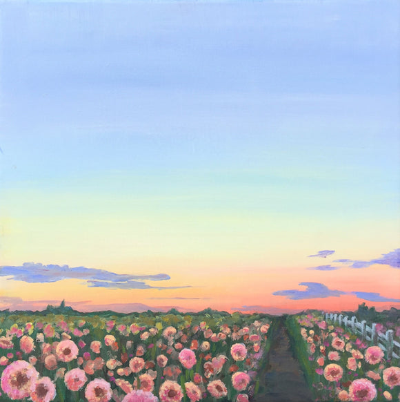 Sunset on a Flower Field