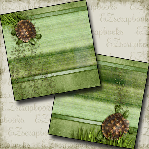 Garden Turtles NPM - 2948