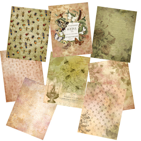 All The Bugs Paper Pack - 7203 - EZscrapbooks Scrapbook Layouts Journals