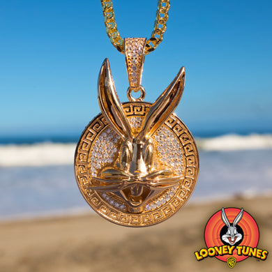 Looney Tunes Jewelry Collection