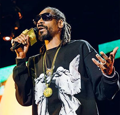 Snoop Dogg performing at Big Day Out in Sydney.