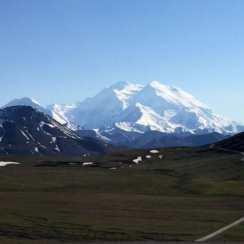 Denali National Park - Alaska travel - Denali Mountain - from Erindraper.com