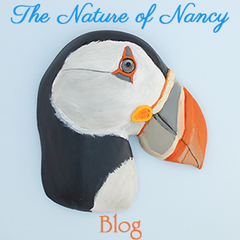 The Nature of Nancy Blog