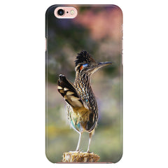 Greater Roadrunner Phone Case