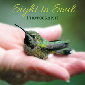 Sight to Soul Photography