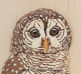 Barred Owl Sculpture