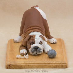 English Bulldog Art, Polymer Clay Dog Sculpture, Unique Dog Lover Gift