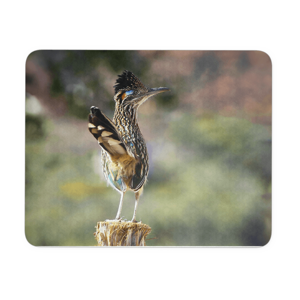 Greater Roadrunner photo mouse pad