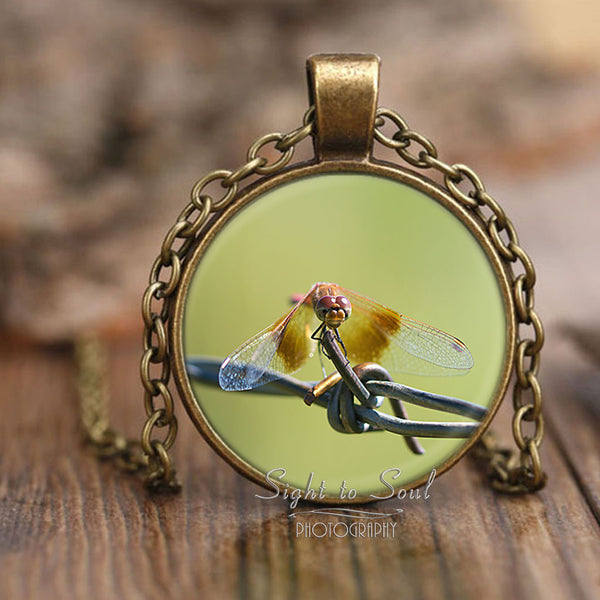 Meadowhawk Dragonfly Necklace, unique insect jewelry, photo pendant