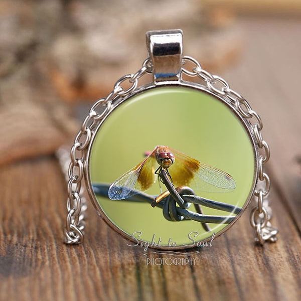Meadowhawk Dragonfly Pendant Necklace, Unique Insect Jewelry