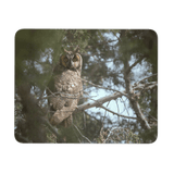 Long Eared Owl Mouse Pad, Gifts for Bird Watchers, Wildlife Photography