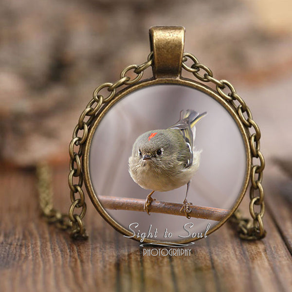Cute Bird Necklace, Ruby Crowned Kinglet Photo Pendant