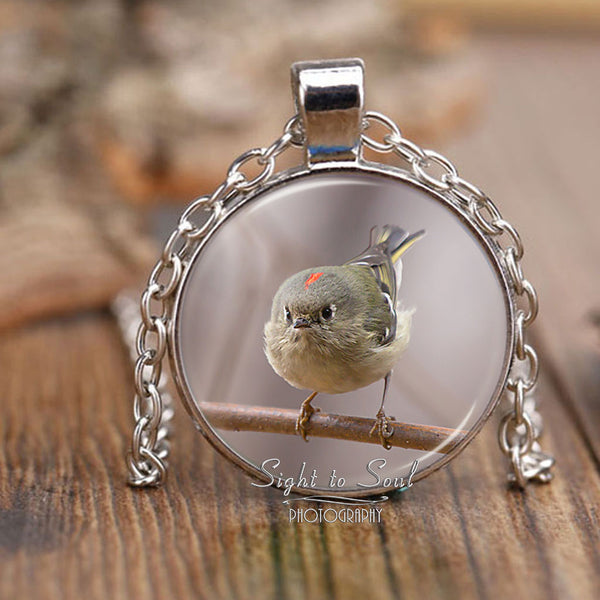 Ruby Crowned Kinglet Photo Pendant, Cute Bird Necklace, Nature Jewelry
