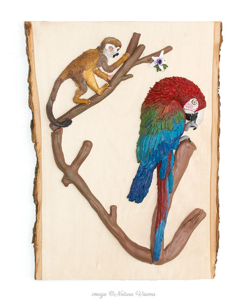 Red and Green Macaw and Squirrel Monkey