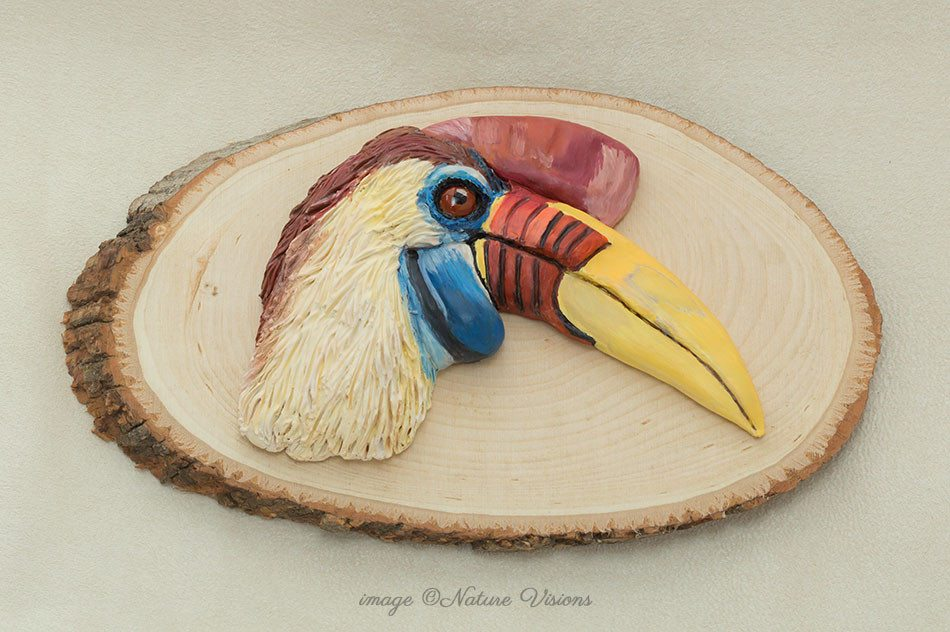 Red Knobbed Hornbill art polymer clay bird
