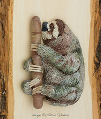 Three toed Sloth Sculpture on Basswood Plank Bas Relief Wall Art Polymer Clay Animal Costa Rica Art