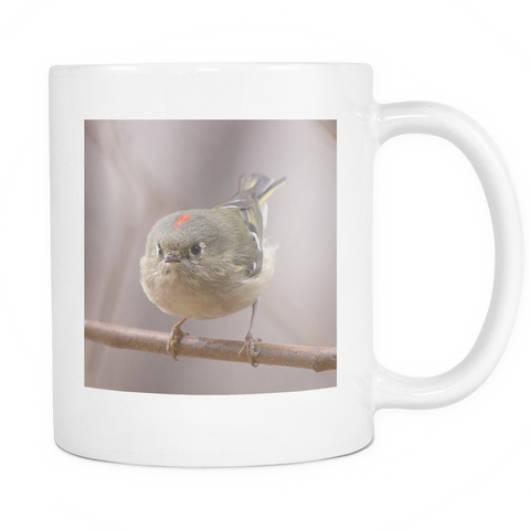 Ruby Crowned Kinglet Bird Photo Mug