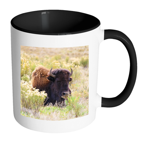 Buffalo Coffee Cup, American Bison Photo