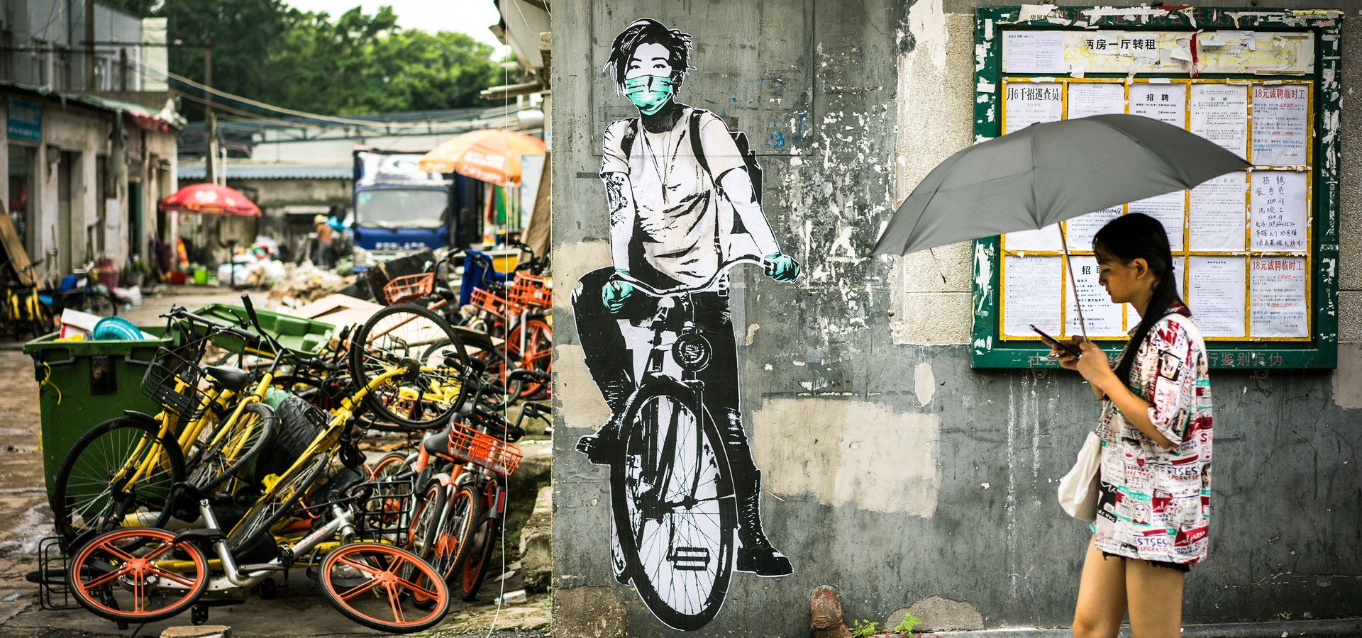Eddie Colla Shenzhen China
